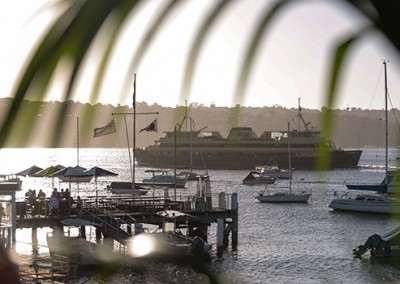 Manly-Yacht-Club-balcony-view-with-plants-&-ferry